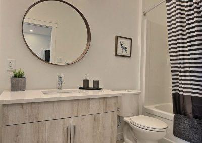 3250 green brook basment suite bathroom4